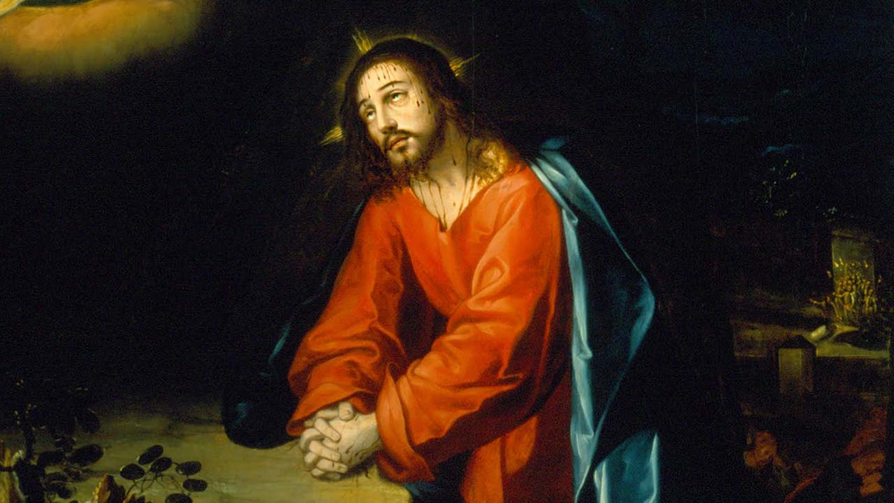 Cristo e a visão beatífica