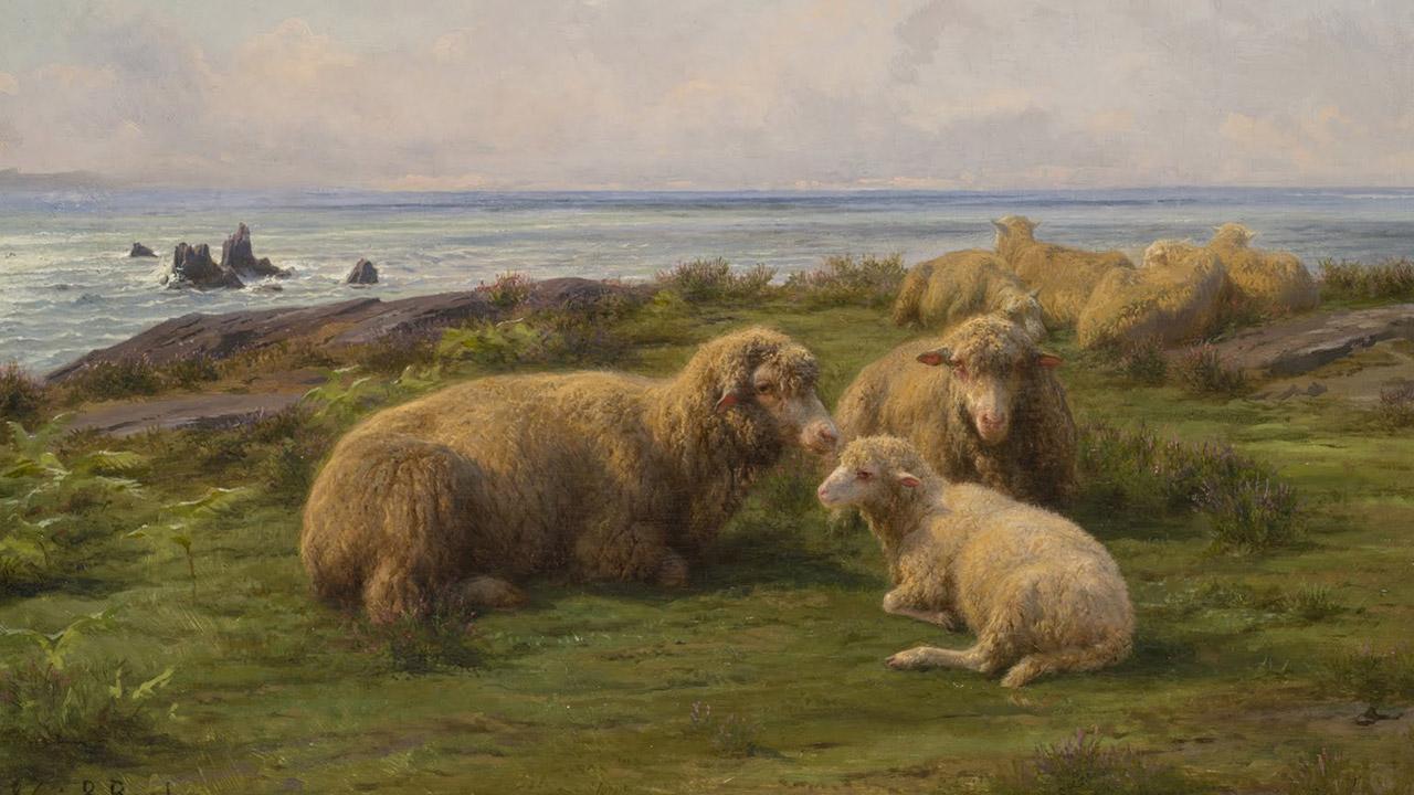 Como ovelhas sem pastor
