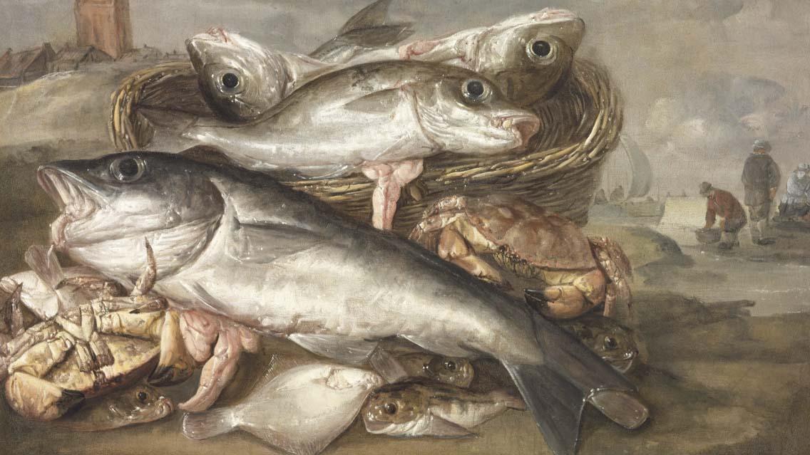 Bons e maus peixes