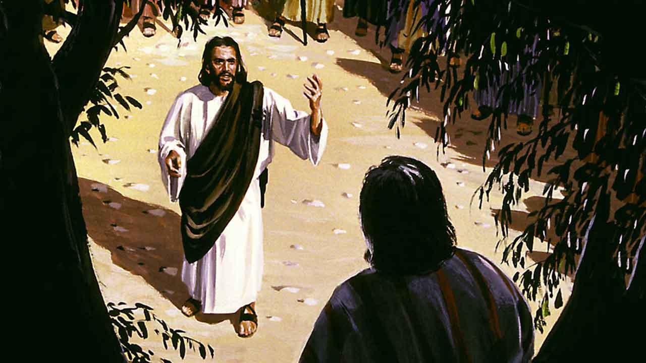 A salvação que entra em nossa casa
