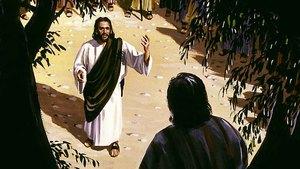 164. A salvação que entra em nossa casa