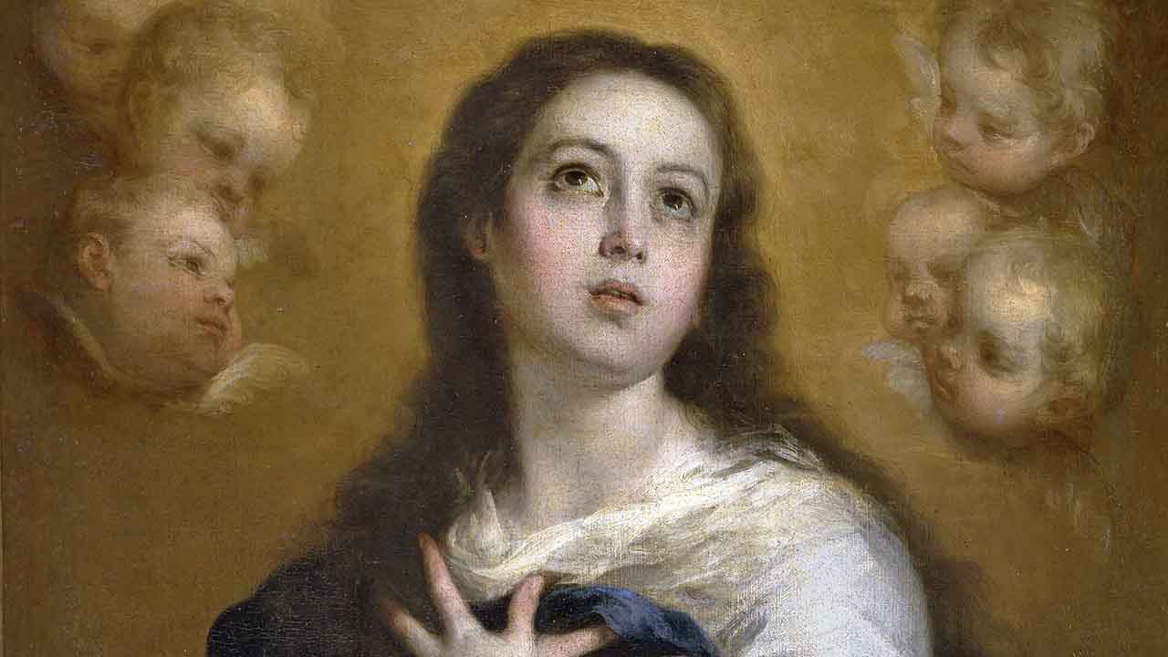 Solenidade da Imaculada Conceição de Nossa Senhora