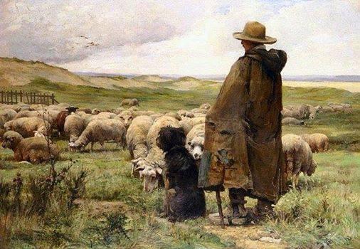 Pastores e não cães mudos