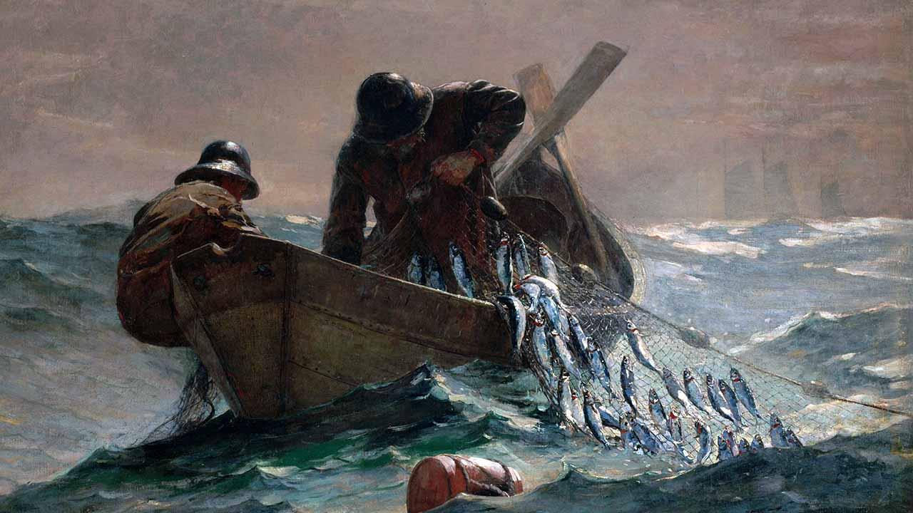 Como uma rede jogada ao mar
