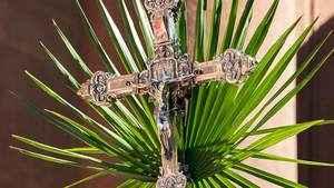 236. Domingo de Ramos e da Paixão do Senhor