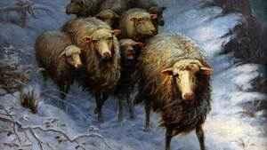 """253. """"Como ovelhas sem pastor"""""""