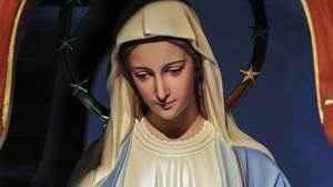 1014. Memória de Nossa Senhora das Graças