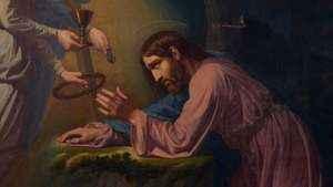 1061. A compaixão de Cristo sacerdote