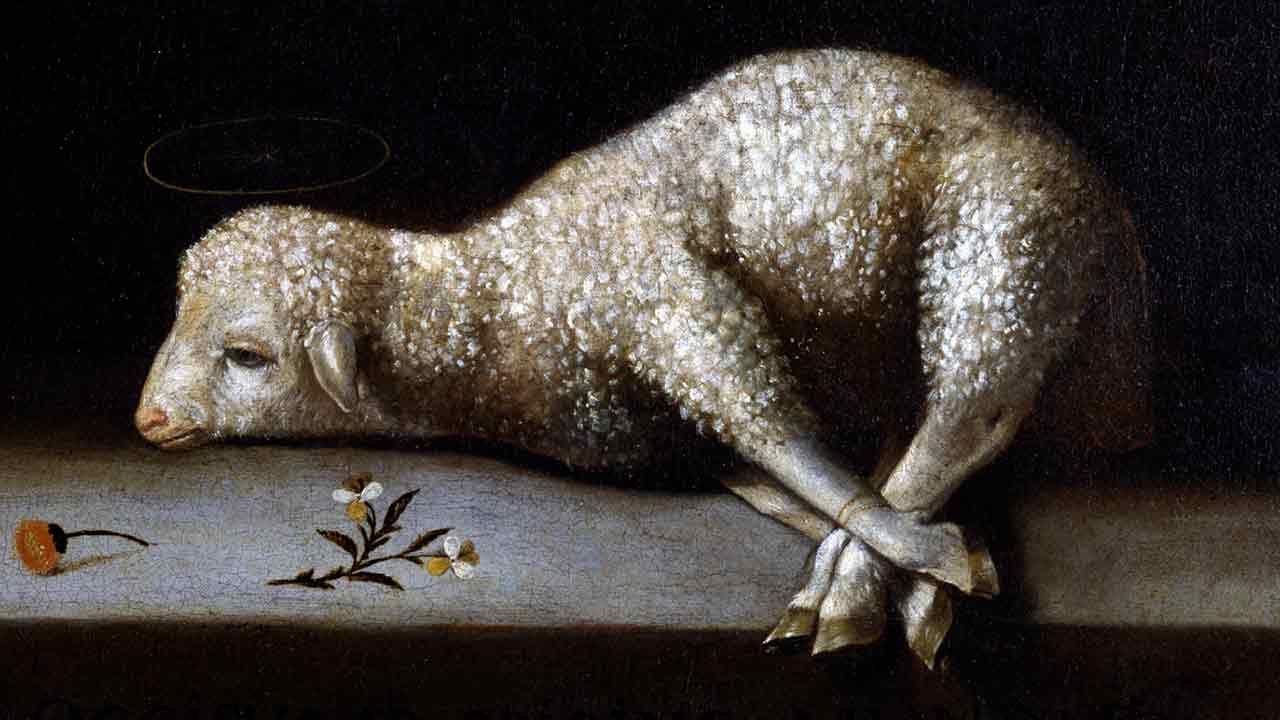 """O Cordeiro redimiu as ovelhas"""