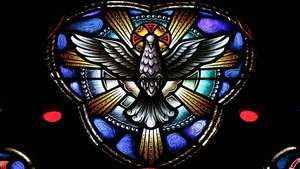 297. O Espírito Santo vos ensinará tudo