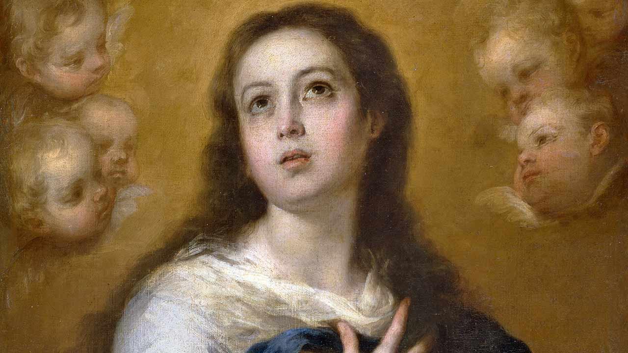 Unamo-nos à Imaculada, para com ela triunfar!