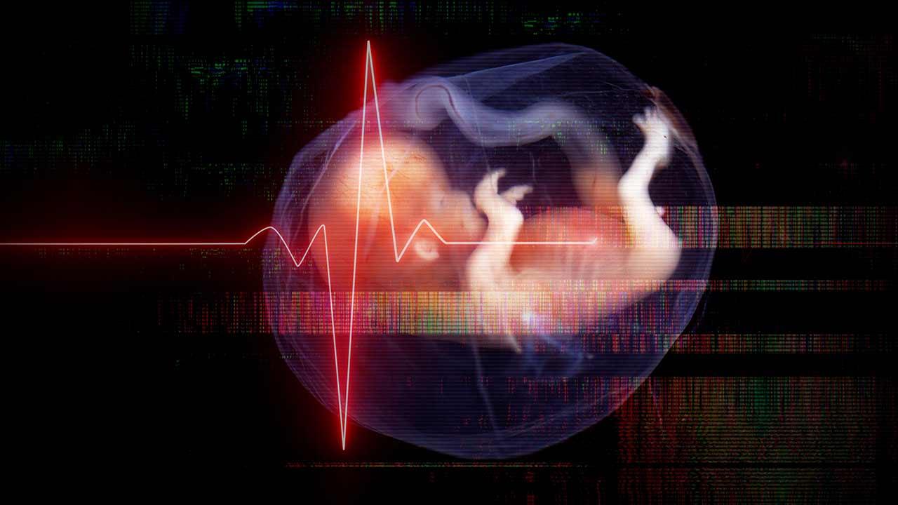 Morte, mentiras e manipulação: o caso do aborto de Alagoinha