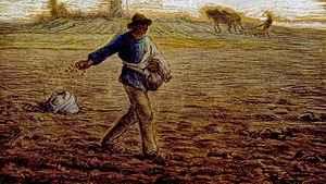 1582. Uma semente, três terrenos
