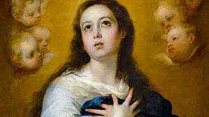 1650. Solenidade da Imaculada Conceição de Nossa Senhora