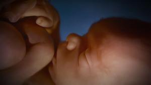 """25. Estudo do documento """"Nova Estratégia Mundial do Aborto"""" (III)"""