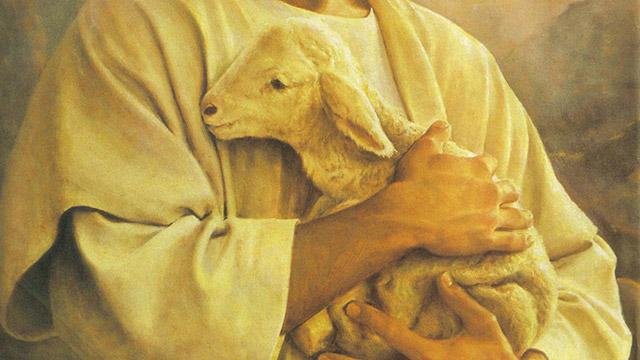 Eu sou a porta das ovelhas