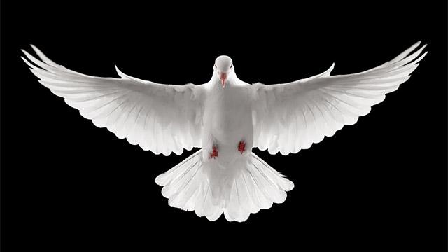 A Docilidade ao Espírito Santo