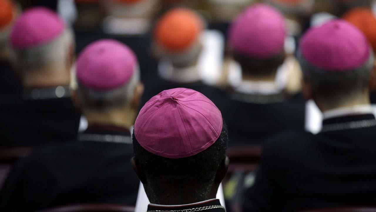 Sínodo: o que os Bispos precisariam saber...