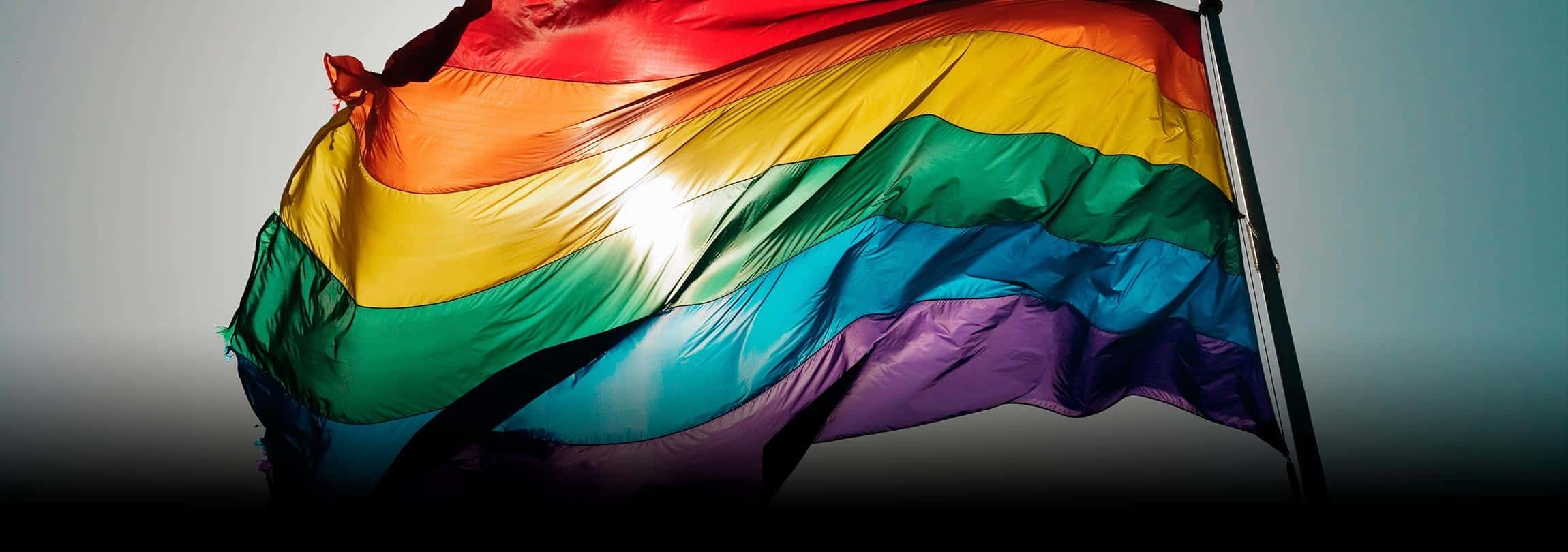 "A mídia, os gayzistas e a ""cura gay"""