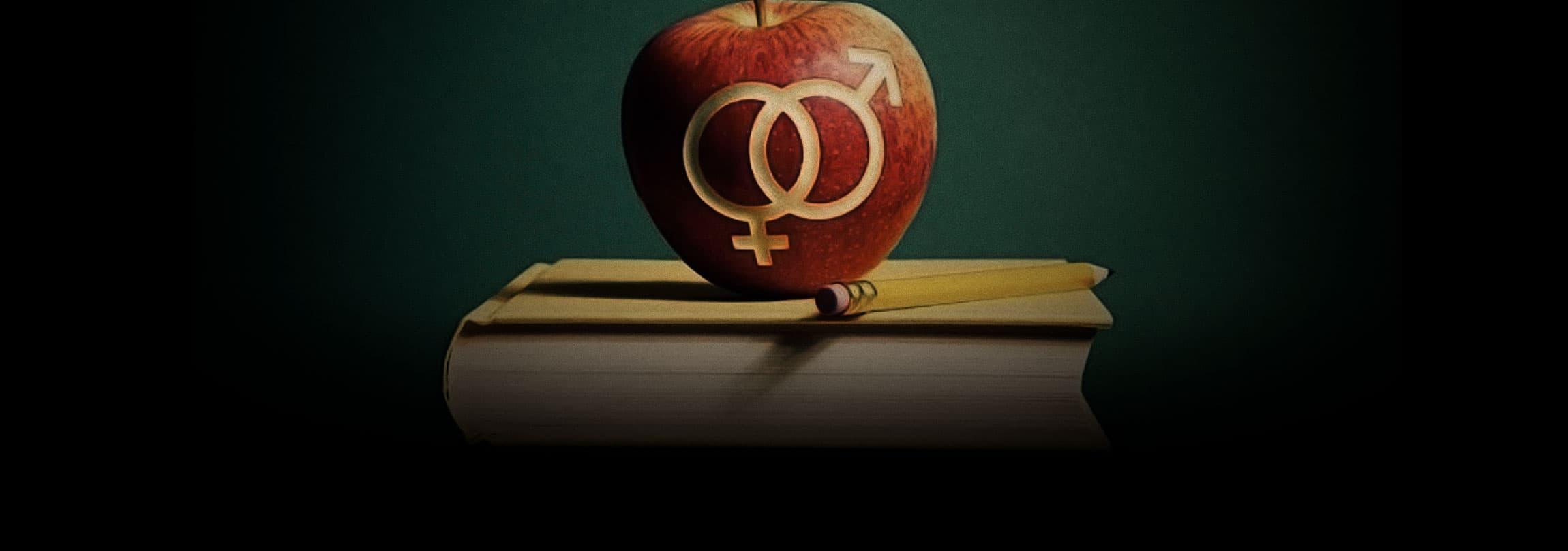 """O """"vale tudo"""" da educação sexual e da ideologia de gênero"""